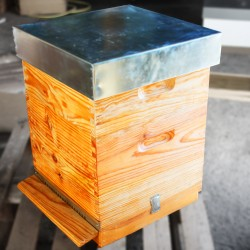 Lusitana Beehive with frames without wax
