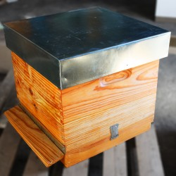 Lusitana Hive body with frames without wax