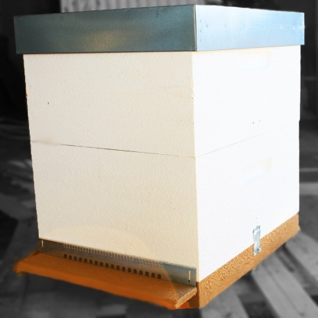 Langstroth Behive Complete w/ frames without wax